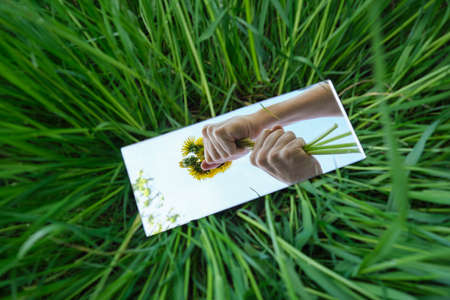 abstraction. in the mirror are male hands, dandelions sky. green nature around. close-up Stockfoto