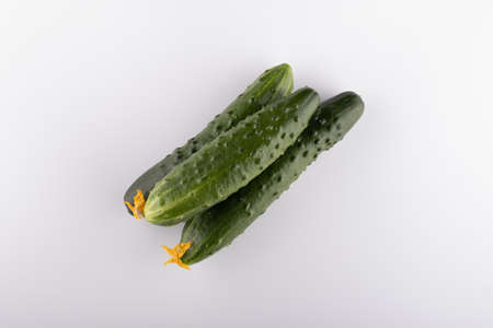 cucumber cucumber isolated on white background close-up