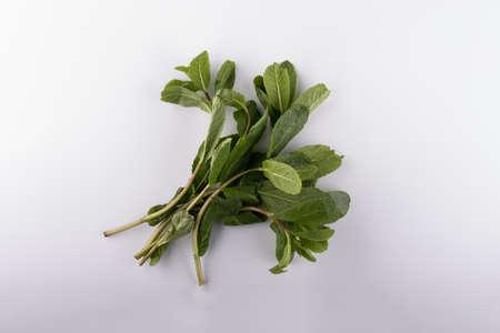fresh mint leaves isolated on white background. close up Stockfoto
