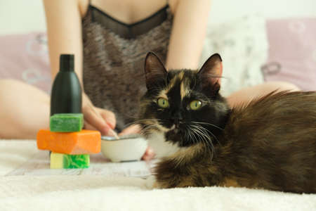DIY cosmetics. Female hands create a cream of different ingredients. A cat nearby is watching the mistress. Stockfoto - 149399065