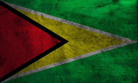smith: The flag of Guyana, known as The Golden Arrow, has been the national flag of Guyana since May 1966 when the country became independent from the United Kingdom. It was designed by Whitney Smith, an American vexillologist though originally without the black