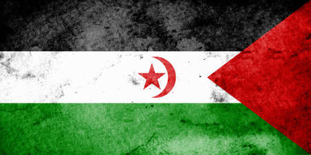 sahrawi arab democratic republic: The flag of the Sahrawi Arab Democratic Republic is a combination of the Pan-Arab colors of black, green, white, and red, and the Islamic symbol of the star and crescent. On February 27, 1976 the flag was adopted as the official flag of the Sahrawi Arab D