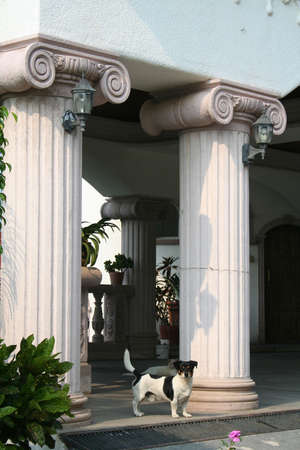 guard house: Dog protecting home with fancy pillars