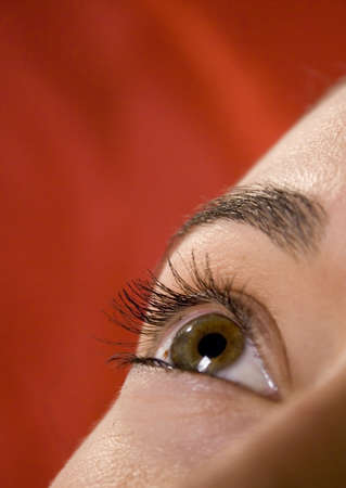dilate: Close up of pretty young eye Stock Photo
