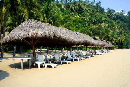 vacationing: Row of beach cabanas with cairs next to palm trees Stock Photo