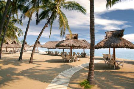 cozumel: las chozas tropicales de la playa se alinearon debajo de �rboles de palma