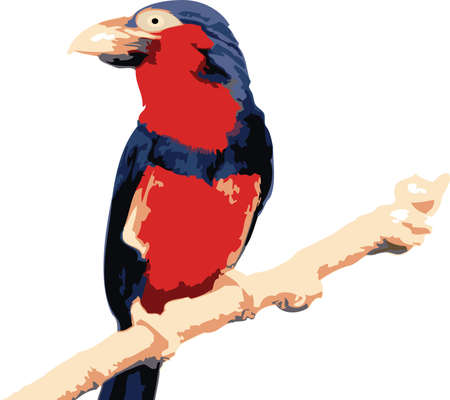 Vector illustration of a colorfull red tropical bird illustration