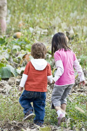 Two young children holding hands walking in a Pumpkin patch photo