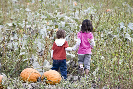 Two young children playing in a Pumpkin patch photo