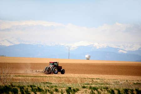 plowing: tractor arar campos en una granja de mouuntains y nieve en segundo plano