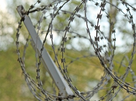 A steel barbed wire under the sunlight Stock Photo - 15020641