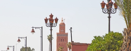 berber: Koutubia mosque and palm trees in marrakech morocco