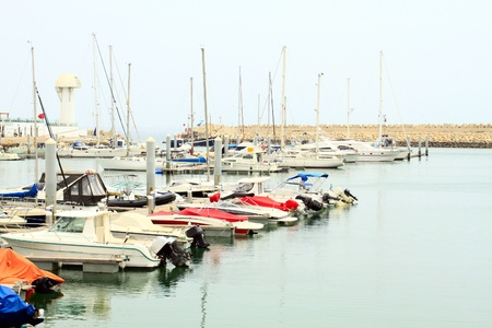 Port with boats in the morning  Marina port in Agadir, Morocco  photo