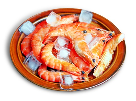 whote: Fresh red shrimps with ice on the plate - isolated on whote background