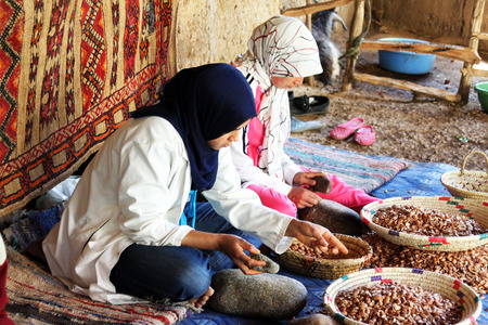 berber: May 28, 2012: Women work in a cooperative for the manufacturing of argan fruits