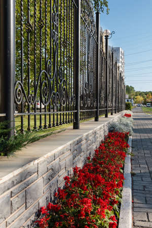 metal fence: lawn with ornamental plants and flowers about metal fence Stock Photo