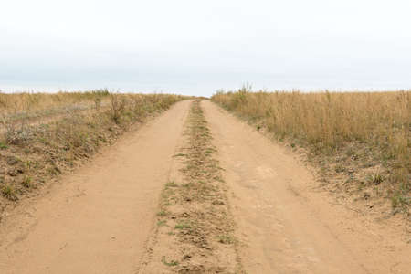 unpaved road: Field unpaved road goes to the horizon