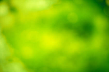 shade: abstract blurred background with a shade of green