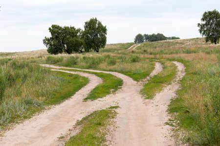 fork in the road: fork in the road in the steppes