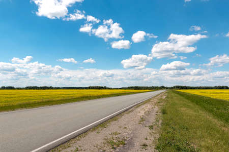 blossoming yellow flower tree: Blue sky with white beautiful clouds over the highway Stock Photo