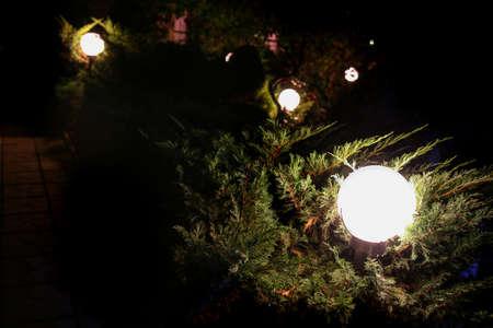 round street lamp in the garden at night
