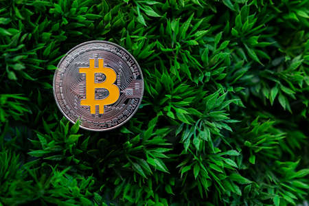 Bitcoin and altcoins, cryptocurrency, virtual money, they are gaining popularity all over the world