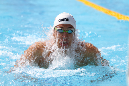 swimming animal: ISTANBUL, TURKEY - AUGUST 16, 2015: Unidentified competitor swims at the Turkcell Turkish Swimming Championship in Enka Sports Center