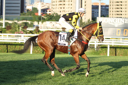 ISTANBUL, TURKEY - JUNE 25, 2017: Unidentified rider getting ready to Gazi Run in Istanbul Horce Race, Veliefendi racetrack.