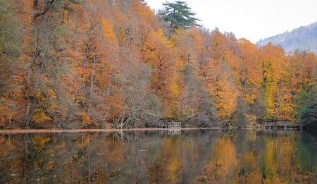 Buyuk Lake in Yedigoller National Park, Bolu, Turkey