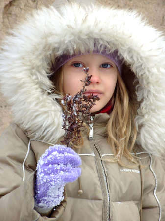 The little girl in a fur hood, holding a twig Winter Flower. The little girl in lilac gloves. Stock Photo