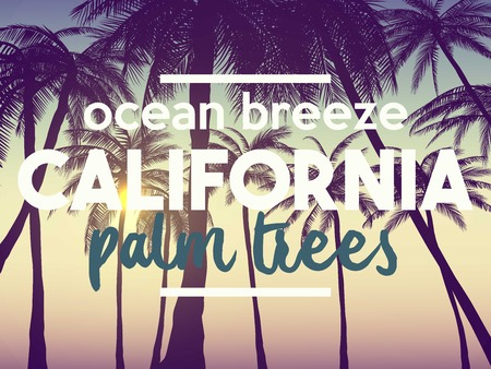 Summer California Tumblr Backgrounds Set With Palms Sky And Sunset Placard Poster Flyer