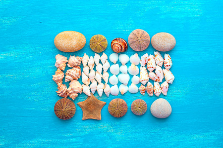 Set sea shell decorative frame place for text. Flat view