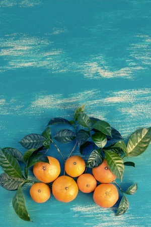 Ripe tangerines with green leaves on a bright blue background. Top view flat lay copy space