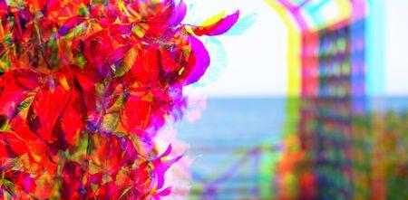 Glitch effect. Autumn landscape gazebo by sea Bush leaves are red Nature background Banner Foto de archivo