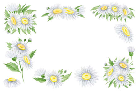 Watercolor daisies frame for your text Botanical elements for wedding invitations, birthday cards, cards