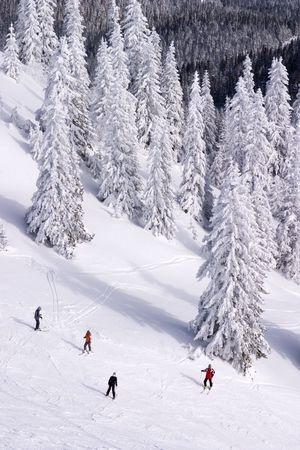 republika: People skiing on Jahorina, Republika Srpska, Bosnia and Herzegovina