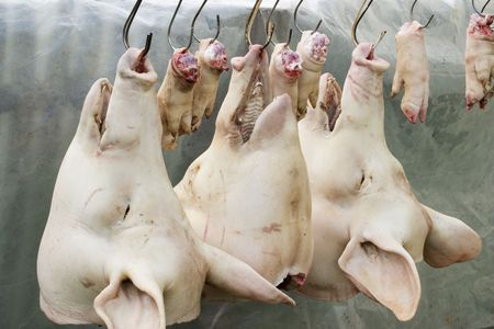 Pork heads and feet hanging on hooks at butcher's Stock Photo - 3340755