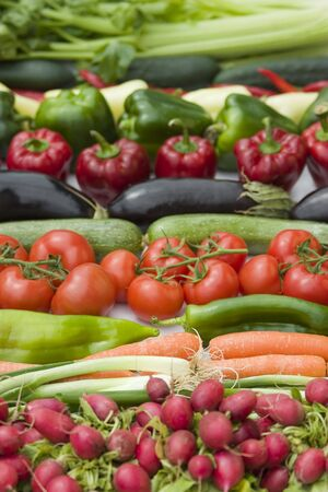 Vegetables lineup on white background Stock Photo - 3340745