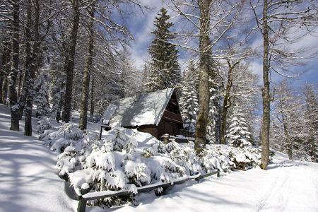 icily: Snowy winter landscape on Jahorina mountain near Sarajevo, Republika Srpska, Bosnia Stock Photo