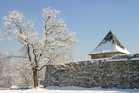 republika: Winter landscape of old Kastel castle walls and lone tree in Banja Luka, Republika Srpska, Bosnia and Herzegovina Stock Photo