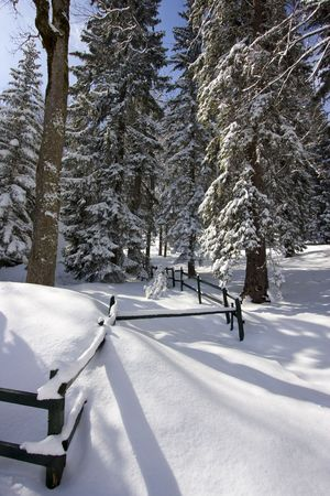 republika: Snowy winter landscape on Jahorina mountain near Sarajevo, Republika Srpska, Bosnia Stock Photo