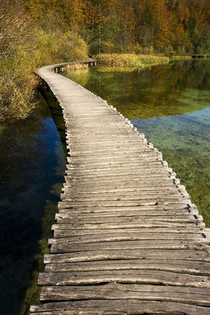 plitvice: Beautiful sunny autumn day in forest near Plitvice Lakes national park in Croatia