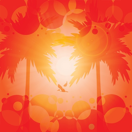 Orange summer holiday tropical background  Vector