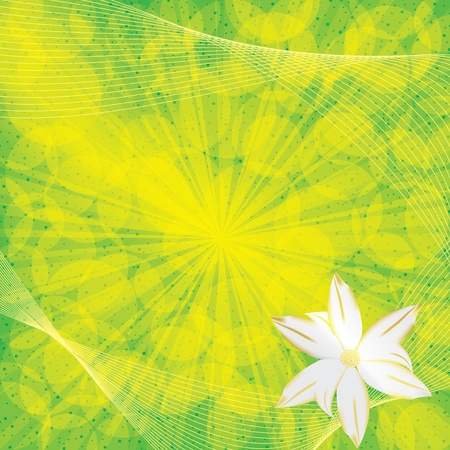 Abstract floral green background Vector