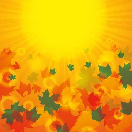 Autumn abstract background with leaf Vector
