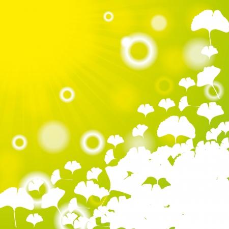 Résumé de ginkgo biloba sur fond vert