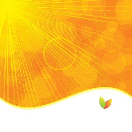 Summer or autumn orange background Stock Vector - 15790247