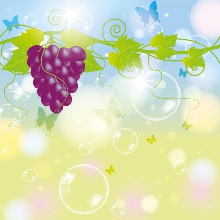 Grape with blur autumn background and bubbles Illustration