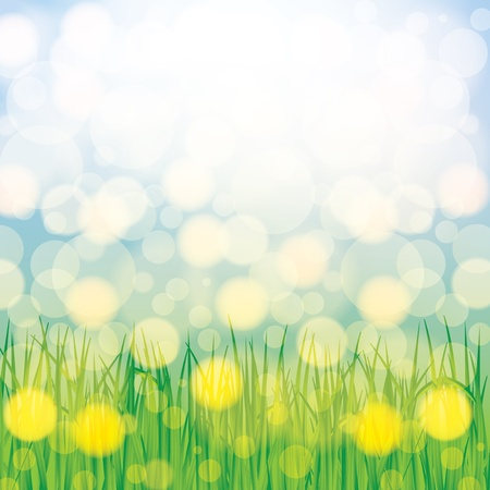 Abstract spring summer background with grass Stock Vector - 16540399