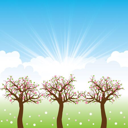 Beautiful spring background with spring trees and flowers Stock Vector - 16540925